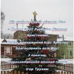 Новорічна ялинка Старий Самбір