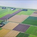 land-law [800x600]