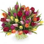 kievflower raduga_enl